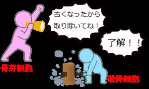 e0355864_15500175